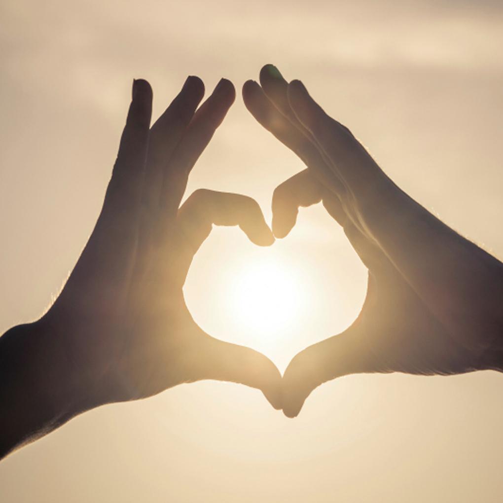 Frases Del Dia Del Amor Y La Amistad