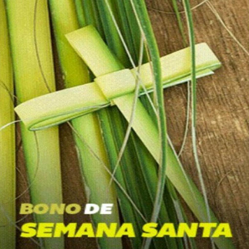 Bono de Semana Santa Patria gob ve