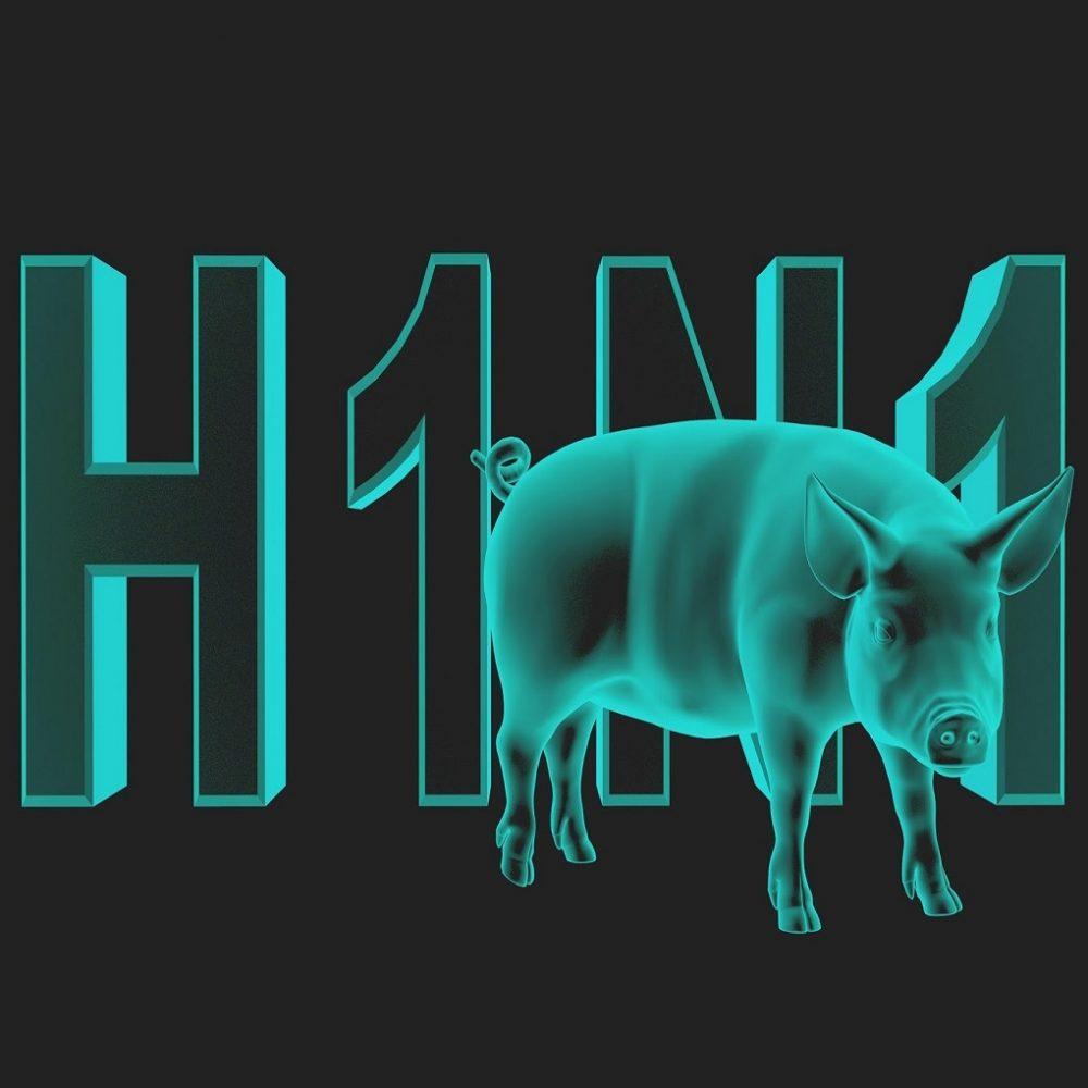 Diagnostican caso de gripe porcina en el  Hospital J.M de los Ríos