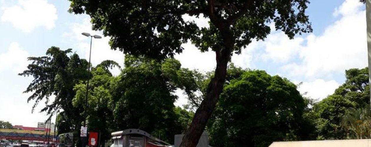 Consulta Popular en Catia intentó ser saboteada por colectivos