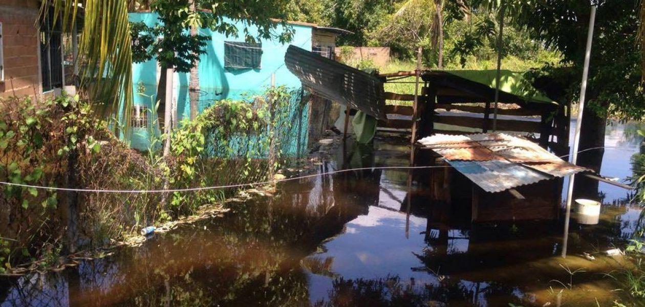Crecida del río también afecta a Ciudad Bolívar
