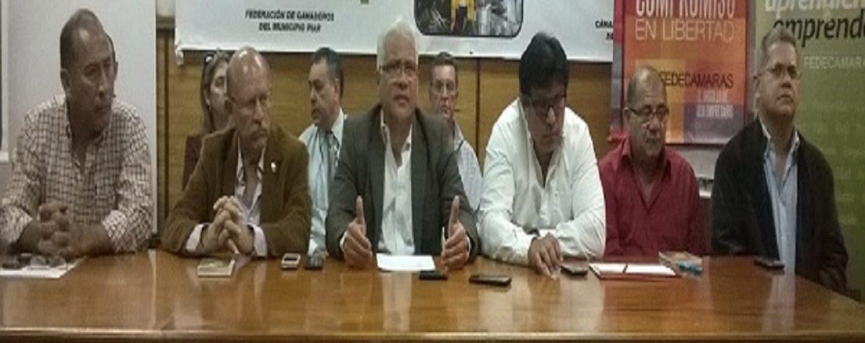Fedecámaras respalda paro cívico nacional