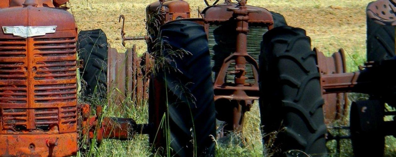 Fedeagro: La política agrícola ha sido fallida generando la caída de la producción