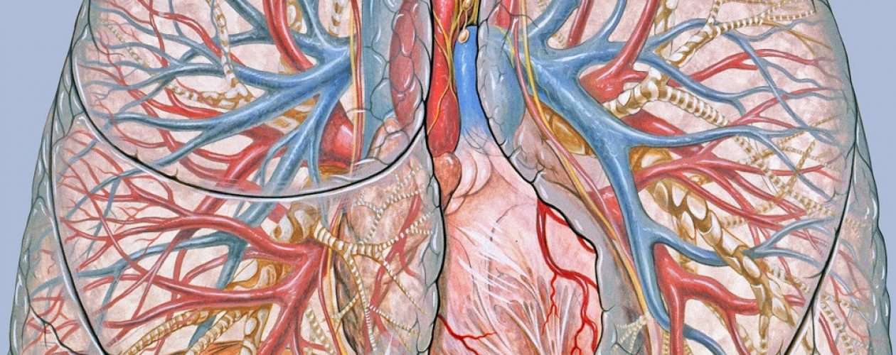 Medicamentos para la hipertensión arterial pulmonar cuestan 10 mil dólares