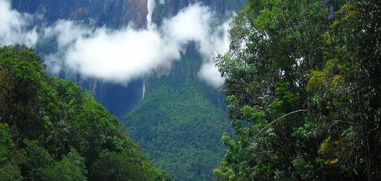 Cámara de Turismo en Bolívar preocupada por inseguridad en Venezuela