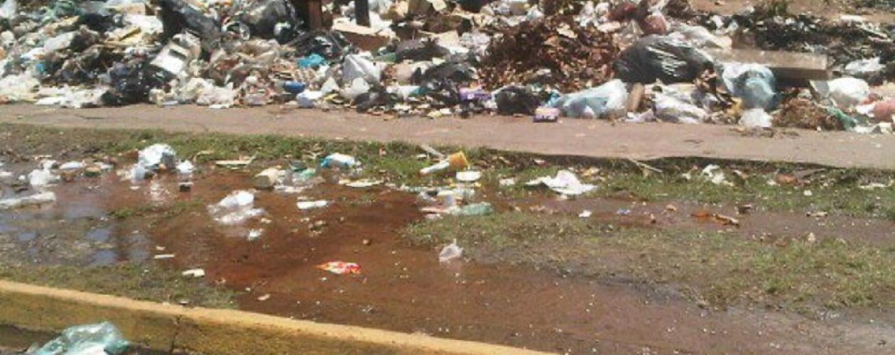 Ley de Gestión Integral de la Basura no se cumple en Guayana