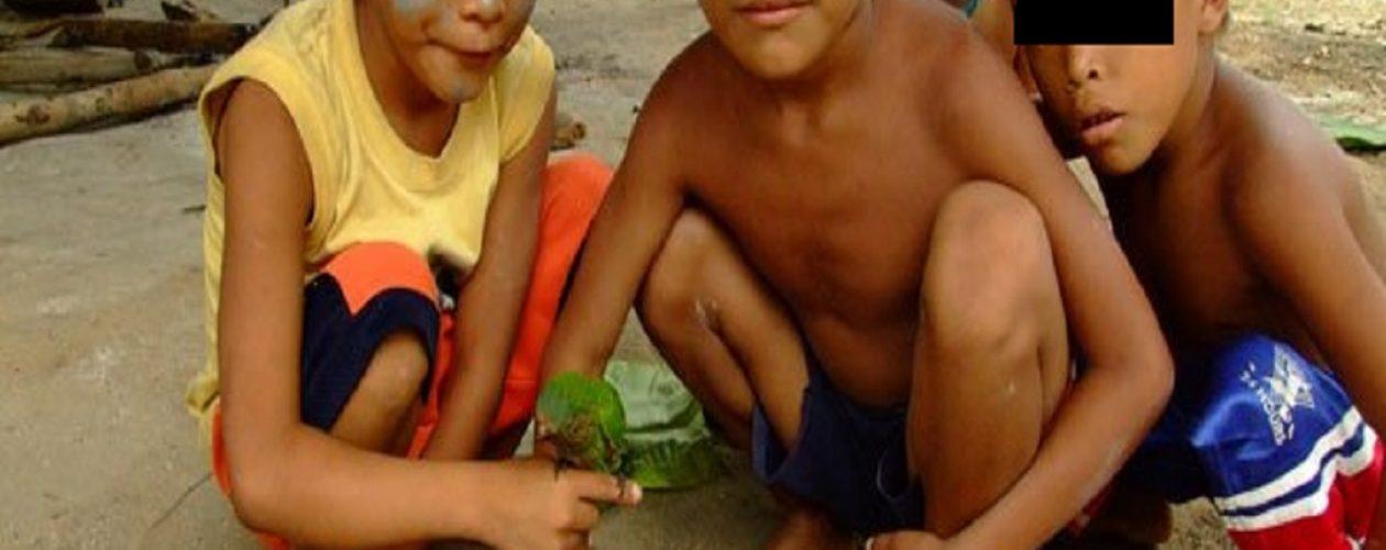 Indígenas huottoja también son atacados por la malaria en Venezuela