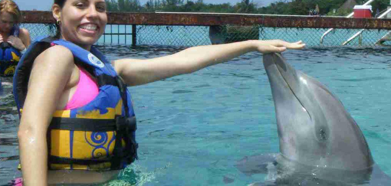 Conoce los beneficios de la terapia con delfines o delfinoterapia