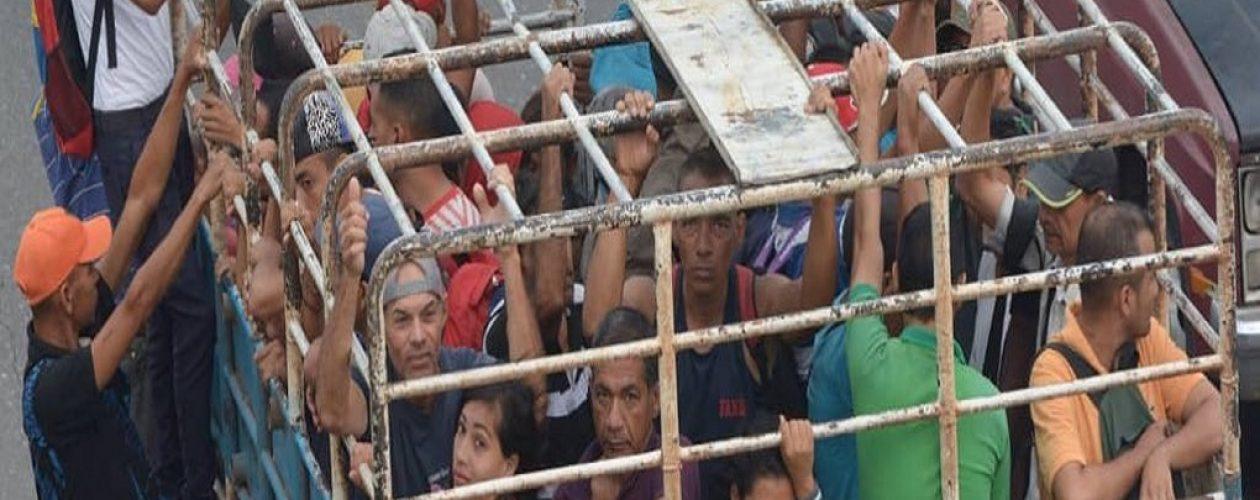En «cochineras» se trasladan los venezolanos del Tocuyito a Valencia