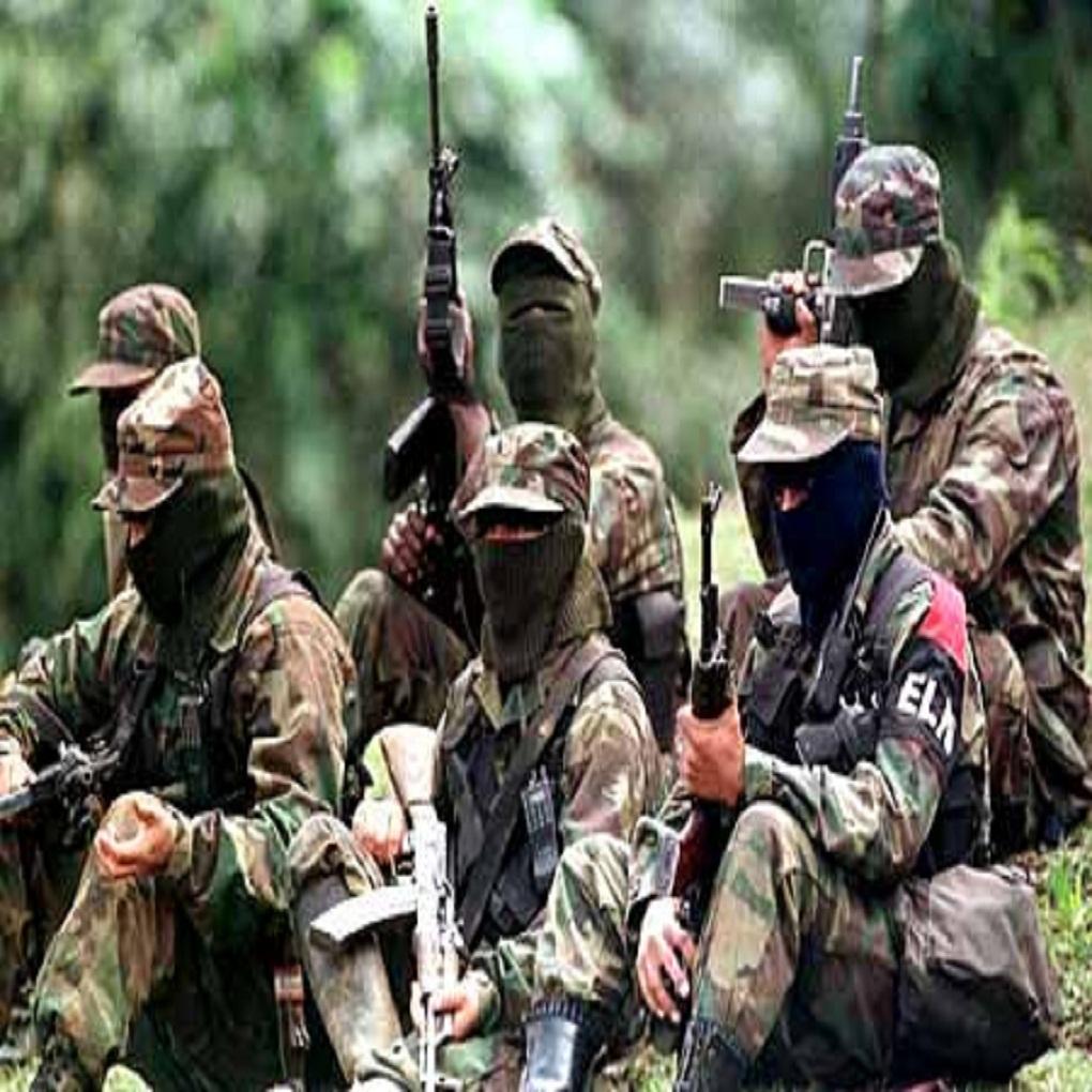 Sed de control de minas en Bolívar aumenta la violencia y matanzas