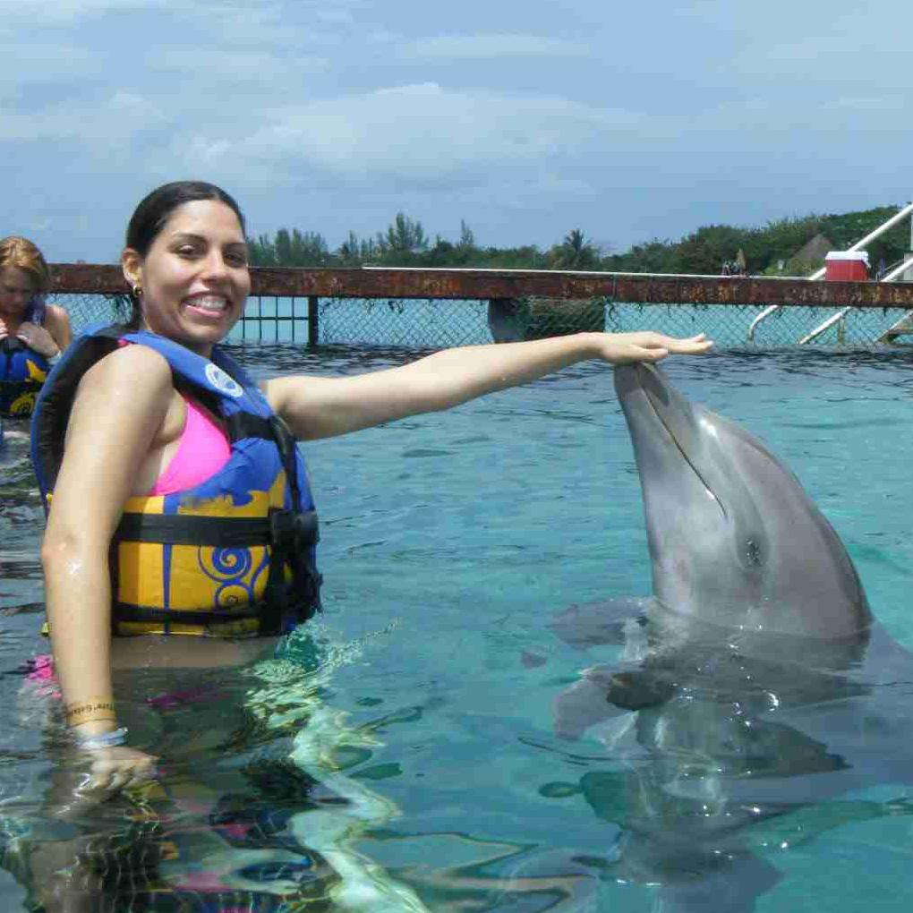 beneficios de la terapia con delfines o delfinoterapia